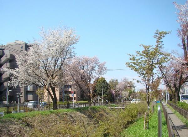 04関野橋を望む