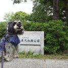 【東大和】のんびり散策できる♪「都立 東大和南公園」