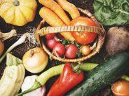 カラダを内側から環境整備!腸内環境を整えるポイント