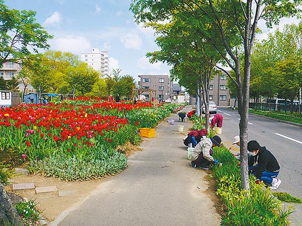 子育てや美術、国際協力、動物など札幌のボランティア!はじめませんか?