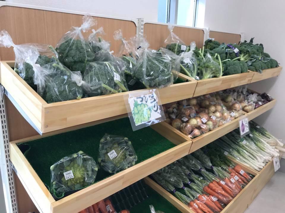 JA野菜販売3