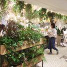 ぶらり散歩☆「東京ミッドタウン日比谷」でお野菜カフェと焙煎珈琲!