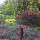 緑の森のガーデンで癒されたい苫小牧のイコロの森