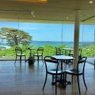 【松島・塩釜】牡蠣カレーパンと絶景カフェ!美味しいドライブコース