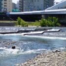 豊平川河川敷で札幌の夏を楽しみませんか♪