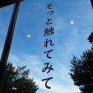 茅ヶ崎、平塚、藤沢の公立アートスペースめぐり