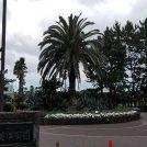 「辻堂海浜公園」は、誰もが湘南ライフを満喫出来るスポットです!