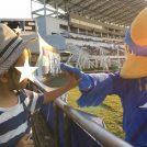 【ママO子のゼルビア応援さんぽ】5歳児ゴール裏に戻る 愛媛FC戦
