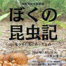舘野鴻絵本原画展「ぼくの昆虫記―見つめた先にあったもの―」町田市民文学館ことばらんど