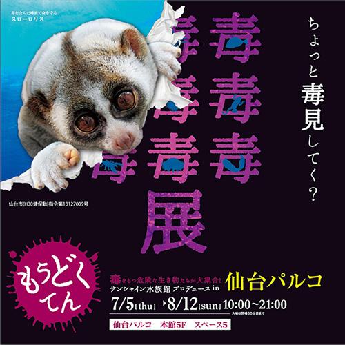 7/5(木)~8/12(日)☆毒毒毒毒...