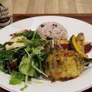 野菜中心のデリランチが楽しめます!「リワードキッチンプラス」