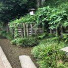 夏の散歩におすすめ!豊田の湧水スポット&隠れ家カフェ「珈琲香楽」