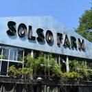 週末はSOLSO FARM川崎へ!SNS映えスポットで田園ランチ