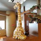 「どんとフジグラン松山店」のキッズルーム席はゆっくり食事を楽しめます♪