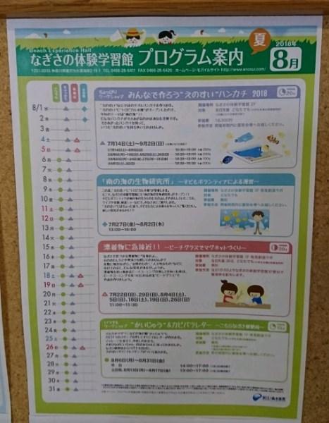 DSC_6514_crop_510x655-2