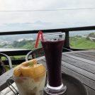 ぶどう畑と富士山の絶景カフェ ~萩原フルーツ農園~