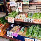 自社農場からの産地直送野菜が魅力的!「大日ファーム 芦屋」