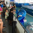 夏遊びに!透明度抜群の志布志湾を満喫!!ダグリ岬海水浴&イルカランド