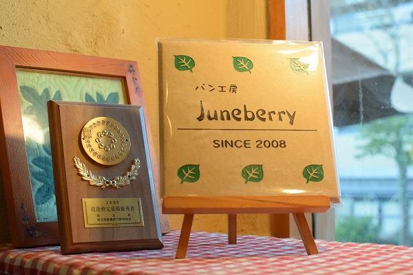 Juneberry-05