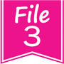 File 3