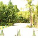 モーニングは森の中!大宮、住宅地の癒し空間【三橋の森 カフェボスケ】