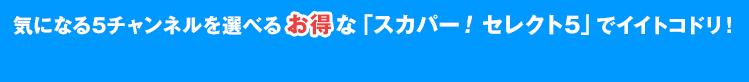 気になる5チャンネルを選べるお得な「スカパー!セレクト5」でイイトコドリ!
