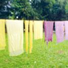 【青梅・二俣尾】9/10(月)開催、草木染め体験で自然の彩りをスカーフに