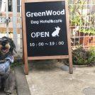 【小平】カフェもランもトリミングも♪「green wood(グリーンウッド)」