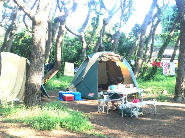 yanagishima tent1