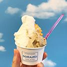 ひんやりおいしい横浜のアイスクリームを紹介!