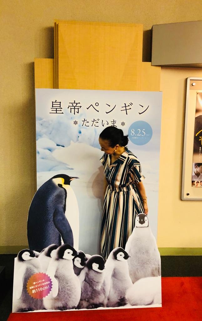 リアルな皇帝ペンギンたちの姿に感動・映画『皇帝ペンギン ただいま』