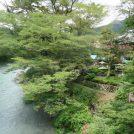 多摩川のほとりで甘酒かき氷★「清流ガーデン澤乃井園」夏祭りは8月末まで