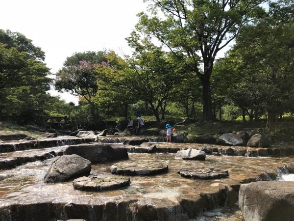 ママ大絶賛!東京水遊び百選に認定したい『府中市郷土の森』水遊びの池!!