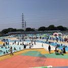 船橋市運動公園の市民プールは流れるプールやターザンロープに幼児も小学生も大はしゃぎ!