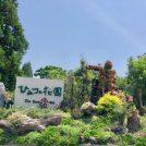 【阿久根市】子供も大人もわくわくする広大な庭園!その名も「ひみつの花園」