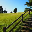 高台から望む絶景!手賀沼沿いの穴場スポット「高野山桃山公園」