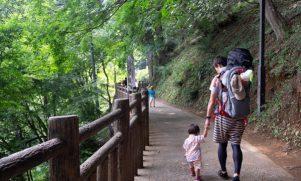 今年の猛暑、東京でもエアコンいらず!御岳山「藤本荘」で宿坊体験