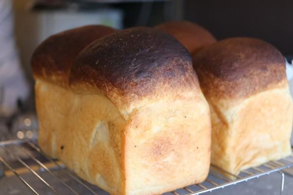 札幌軟石の窯で焼き上げるふんわり食パン!円山西町「cafe スロープ」