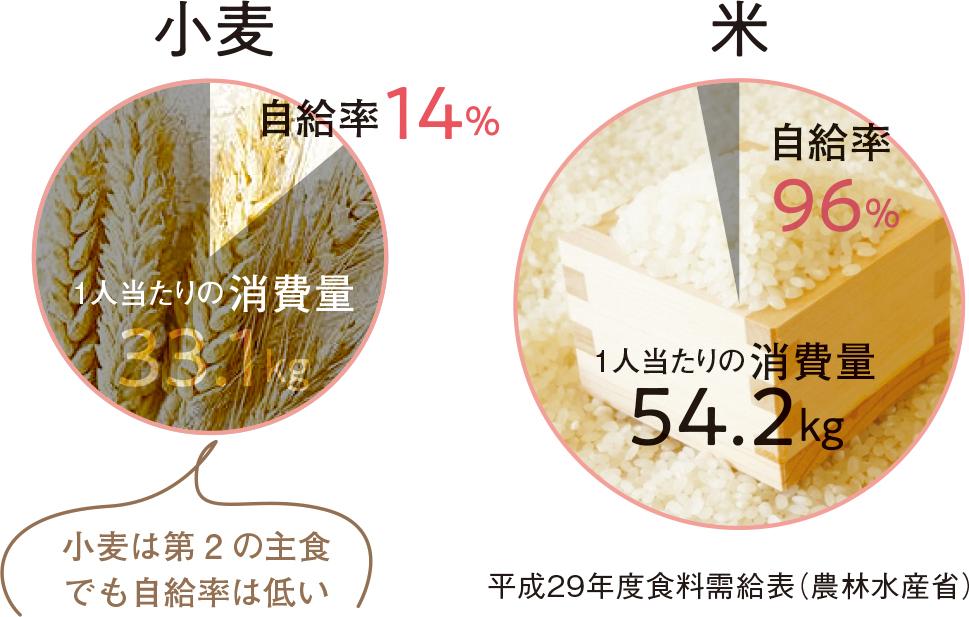 平成29年度食料需給表(農林水産省)