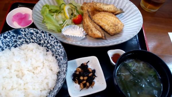 【荒浜】美味しい魚を求めて~【ランチ】