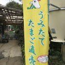 新米の時期が楽しみ☆朝採れたまごを食べたい!@南山田町