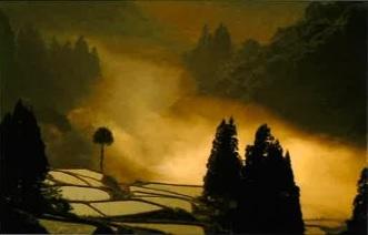 10/4(木)から武蔵野プレイスで「四季の会」写真展開催