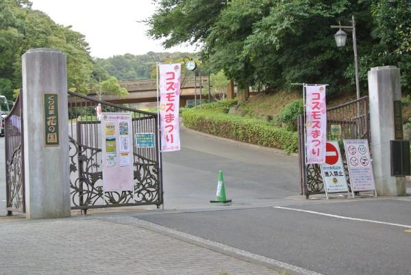 khk_kosumosu_00