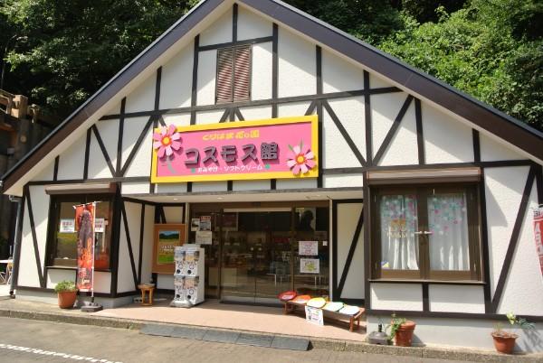 khk_kosumosu_24
