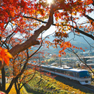 車窓の景色とおしゃべりを楽しむ♪列車旅をご紹介