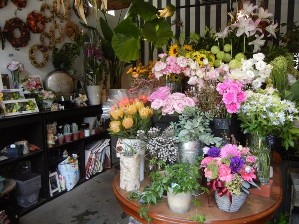 季節のリースやアレンジも♪ 箕面・茨木の「フラワーショップ」5店