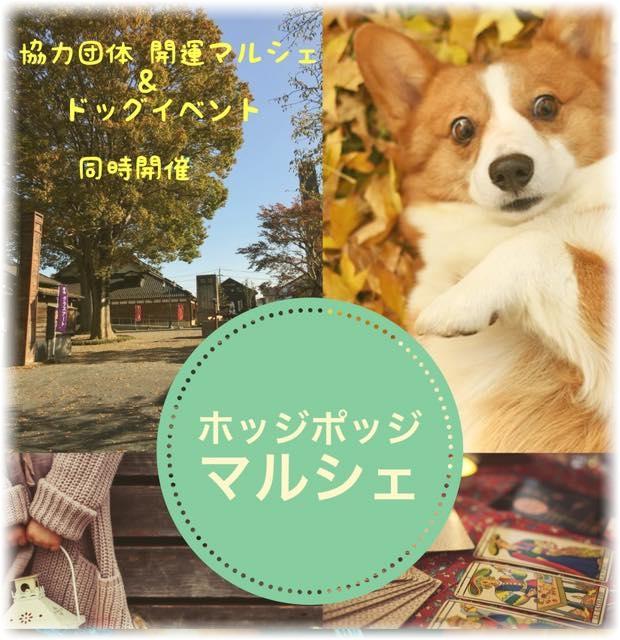 10/21ホッジポッジマルシェ&ドッグイベント@坂東市観光センター秀緑