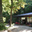 紅葉シーズン到来!秋保大滝の茶処「不動茶屋」