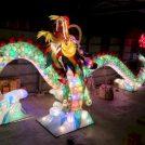 【出水市】ギネス認定も。街が一体となる光の祭典「いずみマチ・テラス」10/27からスタート!