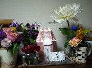 市ヶ尾 ペットエンジェルゲイトで愛猫のお葬式をしてきました。
